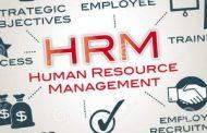 راهنمای مدیرعامل برای رقابت از طریق منابع انسانی سازمان